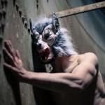 Rotkäppchen und der unglücklich verliebte Wolf (5)